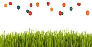 green för easter ägggräs över regn Royaltyfria Bilder