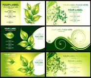 green för lövverk för affärskort Arkivfoton