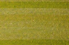 Green fabric background Stock Photo