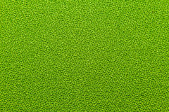 Green Fabric Stock Photos