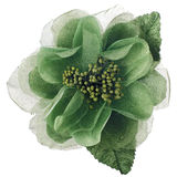 Green fabric flower Stock Images