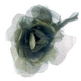 Green fabric flower. Isolated on a white background Stock Photos