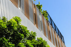 Green facade, vertical garden in architecture Royalty Free Stock Photo