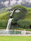 Green face. A spectacular face in the lawn with a waterfall Stock Images