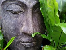 Green, Face, Statue, Sculpture Stock Photos