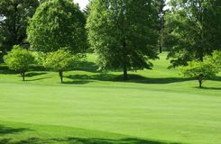 Green Fairway Royalty Free Stock Images