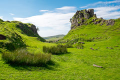 The green Fairy Glen, Scotland. The green Fairy Glen on the Isle of Skye in Scotland Royalty Free Stock Images