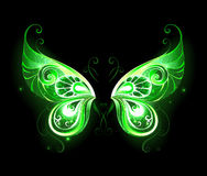 Green fairy wings. Patterned, green, glowing fairy wings on a black background. Magic symbol. Fairy Wings Royalty Free Stock Photo