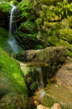 Green Falls. This small waterfall is in nature park Czech Switzerland Royalty Free Stock Photography