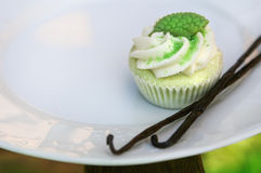 Green fancy cake with vanilla stick on white Royalty Free Stock Images