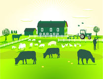 Green Farm Stock Photography