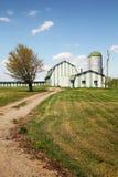 Green farm Royalty Free Stock Photo