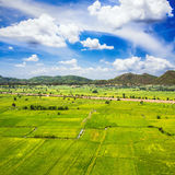 Green farm with blue sky Royalty Free Stock Photos