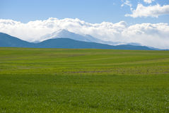 Green Farm Field and Distant Mountain Stock Image