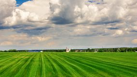 Farm fields, rural landscape. Green farm fields, rural landscape Royalty Free Stock Photos
