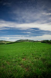 Green Farm land Royalty Free Stock Photo