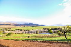 Green farm landscape with gravel road in foreground and mountains in the background. Western Cape, South Africa Royalty Free Stock Photography
