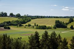 Green farmer fields on the back. View of pine tops in the foreground, green farmer fields on the back and meadows overgrown with bushes and trees in the middle royalty free stock images