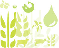 Green Farming. A fully scalable vector illustration of Green Farming Crop Icons. Jpeg, Illustrator AI and EPS 8.0 files included stock illustration