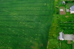 Green farmland field with agricultural building and garden beds. Green farmland field with agricultural building and growing plantation on garden beds areal top royalty free stock image