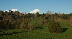 Green Farmland Royalty Free Stock Photo