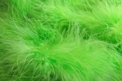 Green feathers background - stock photo Stock Photography