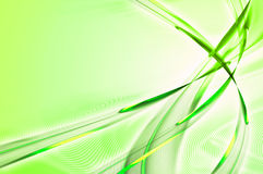 Green feathery abstract Royalty Free Stock Photos