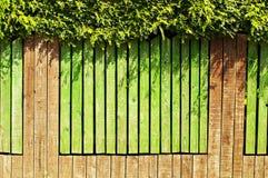 Green fence Stock Photos