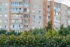 Green fence on the background of the city.  Royalty Free Stock Image