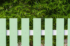 Green fence and bamboo tree Stock Photo
