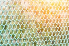 Green fence, side view. Green Background.  Stock Photo