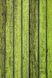 Green fence Stock Images