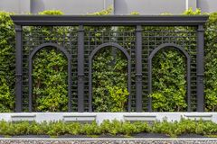 Green fences walls. Green trees adorn the walls and patterned fences. In the garden stock photography