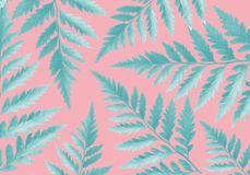 Green fern leaves pink background concept Illustration. Green fern leaves on a pink background concept Illustration art Royalty Free Stock Photo