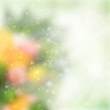 Green festive bokeh background. Spring green, pink and orange festive garden  bokeh background with sun beams Royalty Free Stock Photos