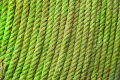 Green fiber cable rope Stock Image