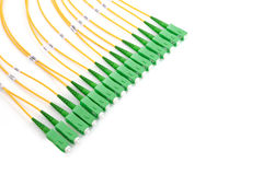 Green fiber optic SC connectors Stock Image
