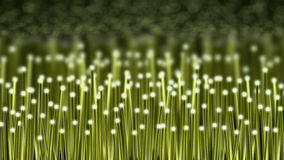 Green fiber optics Stock Photography