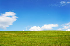 Green Field. Beautiful green field with blue sky Stock Photo