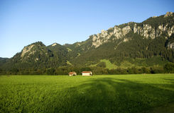 Green field. Two stables and alpine grass in Bavaria royalty free stock photography