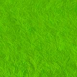 Green field. Texture, realistic grass Royalty Free Stock Photos