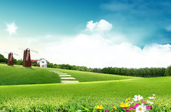 Green field. And blue sky Stock Images