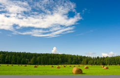 Green field. With stacks and dark blue sky Royalty Free Stock Images