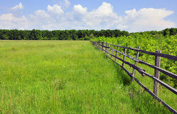 Green field Royalty Free Stock Photo