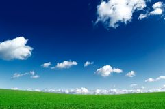 The green field. And blue sky Royalty Free Stock Images