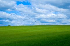 Green field. With power lines Stock Images