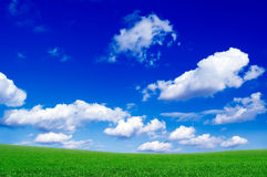 The green field. The green field and beautiful white clouds Stock Image
