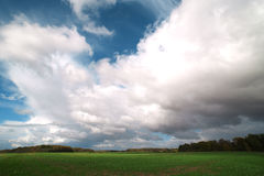 Green field. Royalty Free Stock Photography