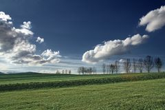 Green field. Beautiful rural field with trees and blue sky Royalty Free Stock Images