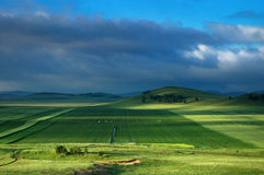 The green field. And cloud in sky Royalty Free Stock Photo